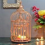 Homesake Copper Bird Cage With Floral Vine (Set Of 2)