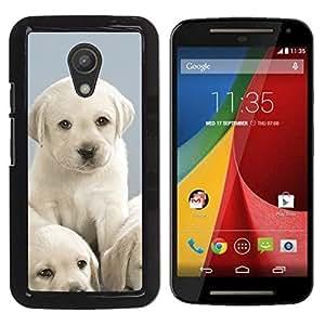 Labrador Cute Small Puppies White - Metal de aluminio y de plástico duro Caja del teléfono - Negro - Motorola Moto G2 II / Moto G (2nd gen) / Moto G (2014)