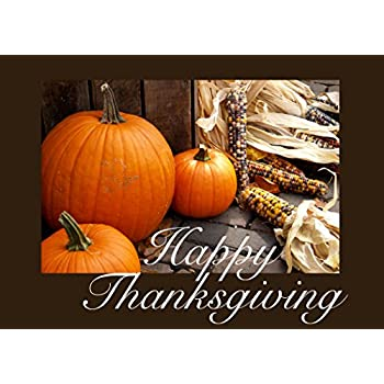 Amazon thanksgiving greeting cards th1503 business greeting thanksgiving greeting cards th1511 business greeting card featuring pumpkins and fall corn box set has 25 greeting cards and 26 white with gold foil m4hsunfo Choice Image