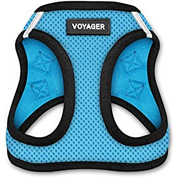 Voyager All Weather No Pull Step-in Mesh Dog Harness with Padded Vest, Best Pet Supplies, Medium, Baby Blue Base