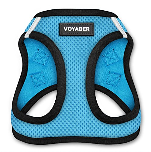 Voyager All Weather No Pull Step-in Mesh Dog Harness Padded Vest - Baby Blue Base, Small (Chest: 14.5