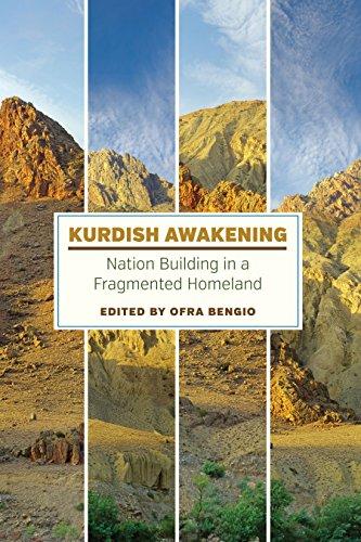 Download Kurdish Awakening: Nation Building in a Fragmented Homeland Pdf