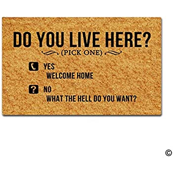 MsMr Entrance Doormat   Funny And Creative Doormat   Do You Live Here Door  Mat For Indoor Outdoor Use Non Woven Fabric Top 23.6x15.7Inch