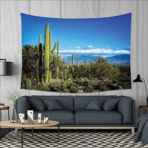 smallbeefly Desert Wall Hanging Tapestries Wide View of The