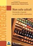 Non Solo Calcoli : Domande e Risposte Sui Perche Della Matematica, Villani, Vinicio and Bernardi, Claudio, 8847026091