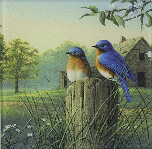 McGowan TT92386 Tuftop Country Morning Bluebirds Trivet