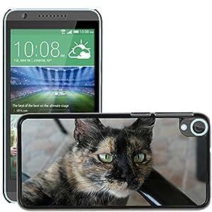 Etui Housse Coque de Protection Cover Rigide pour // M00109186 Mascotas Gato Negro Gato Cara principal // HTC Desire 820