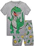 Boys Dinosaurs PJs 2 Piece Sleepwear Pajamas Short Sets Size 3Y