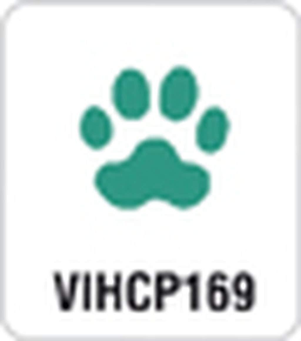 Artemio 1.6 cm Small Paw Lever Punch, Green VIHCP169