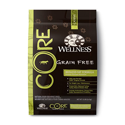 Wellness CORE Natural Reduced Fat Grain Free Dry Dog Food, Turkey & Chicken, 12-Pound Bag