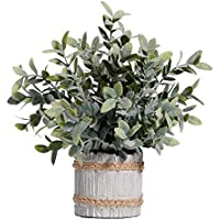 MIAIU Small Potted Artificial Plants Plastic Fake Greenery Topiary Shrubs for Home Office Farmhouse Bathroom Tabletop Indoor Decor Green Rosemary