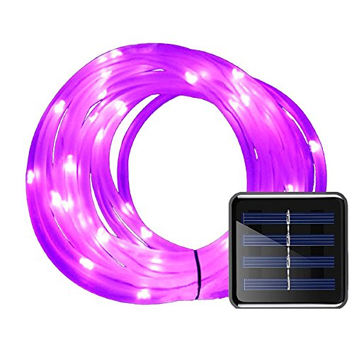 Sports Team Solar Lights in US - 7