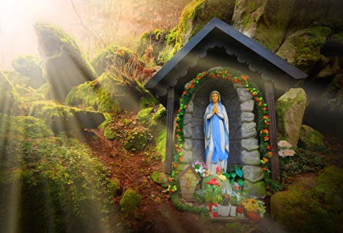 Baocicco 10x6.5ft Vinyl Photography Background Our Lady of Lourdes Shrine Statue Photo Backdrop Virgin Mary Madonna Warm Sunshine Forest Beautiful Scenery Wedding Adult Child Portrait Prop
