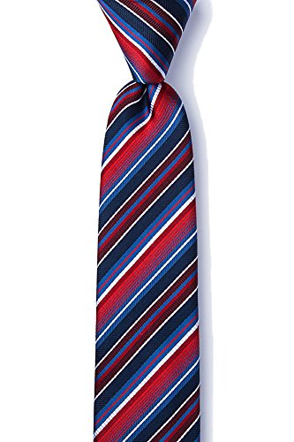 (Men's 100% Silk Contemporary Moy Stripe Skinny Tie Necktie Neckwear (Red & Blue))