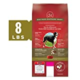 Purina ONE Natural Dry Dog Food, SmartBlend Lamb