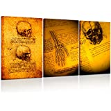 Kreative Arts - Human anatomy for Art Skull and Hand by Leonardo da Vinci Canvas Print Wall Decor Famous Oil Painting Reproduction Stretched and Framed Artwork Ready to Hang 16x24inchx3pcs/set