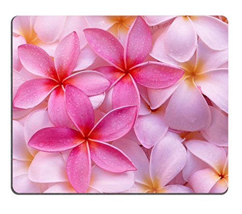 Tropical Pink Plumeria Flowers exotic Hawaii leis fresh pretty Mouse Pads Customized Made to Order Support Ready 9 7/8 Inch (250mm) X 7 7/8 Inch (200mm) X 1/16 Inch (2mm) -