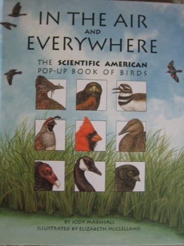 In the Air and Everywhere: The Scientific American Pop-Up Book of Birds