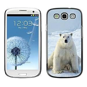 KOKO CASE / Samsung Galaxy S3 I9300 / nieve oso polar blanco hielo ártico animales / Delgado Negro Plástico caso cubierta Shell Armor Funda Case Cover