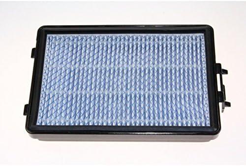 Samsung – H13 filtro de salida de aire, HEPA para aspiradora Samsung: Amazon.es: Hogar
