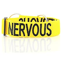 """""""NERVOUS"""" Yellow Color Coded Nylon Dog Collar (Dog Is Very Nervous And Maybe Unpredictable When Approached) Prevents Accidents By Warning Others of Your Dog in Advance! Strong as Leather & chain by Dexil"""