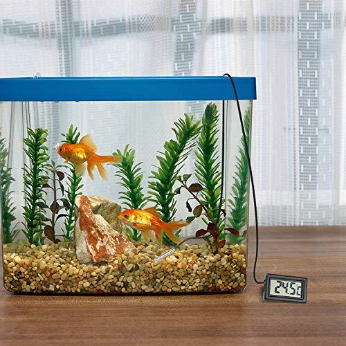 cococity Termómetro de Acuario LCD Digital con termómetro de Agua del refrigerador de sonda 3 Piezas: Amazon.es: Jardín