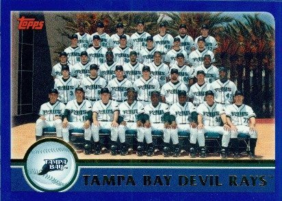 - 2003 Topps # 657 Tampa Bay Devil Rays TC (Team Photo Card) Tampa Bay Devil Rays - Baseball Card
