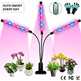 Grow Light, Auto ON & Off Every Day with Two-Way Timer 36W Triple Head Growing Lamp for Indoor Plants, High Power LED, 8 Dimmable Levels, 4/8/12H Memory Timing for Hydroponics Greenhouse Gardening For Sale