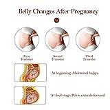 Vikes Maternity Support Belt- Breathable