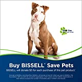 Bissell Cleanview Swivel Pet