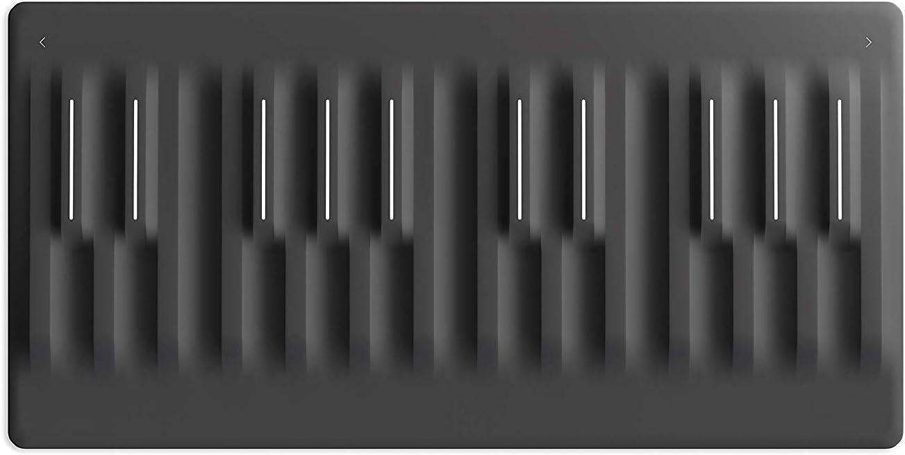 Roli Seaboard Block Wireless Keyboard Controller Musical Instruments