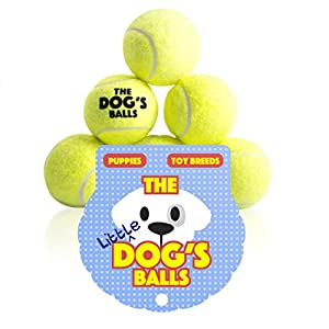 The Little Dog's Balls – 6 Small Yellow Tennis Balls for Dogs, Premium Mini Dog Toy for Puppies & Small Dogs, Puppy… Click on image for further info.