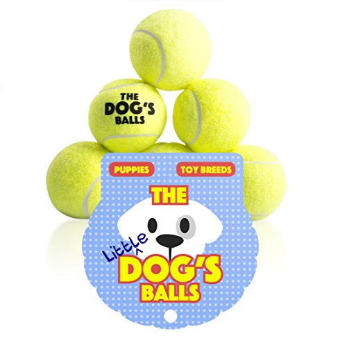 The Little Dog's Balls - 6 Small Yellow Tennis Balls for Dogs, Premium Mini Dog Toy for Puppies & Small Dogs, Puppy Exercise, Play, Training & Fetch. No Squeaker, The King Kong of Little Dog Balls