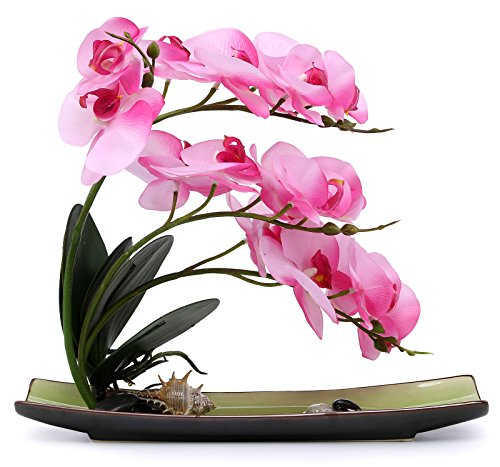 Orchid Flower Phalaenopsis (NNEE Artificial Phalaenopsis Orchid Arrangement with Decorative Flower Pot - Pink Orchild A325)