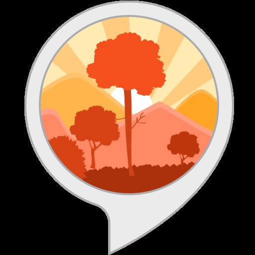 Zen Moods: Forest Sounds