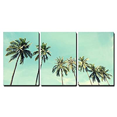 3 Piece Canvas Wall Art - Vintage Nature Photo of Coconut Palm Trees in Seaside - Modern Home Art Stretched and Framed Ready to Hang - 24