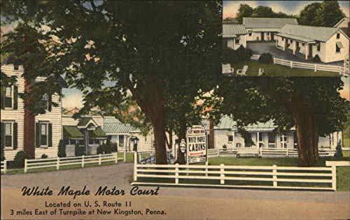 White Maple Motor Court New Kingston, Pennsylvania Original Vintage Postcard
