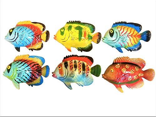 Fish Decor For Walls (All Seas Imports Multi-Color Exotic Set of (6) Decorative Wall Decor Fish with Free Fish)