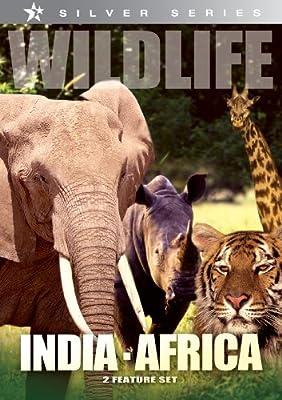 Wildlife: India, Africa/Africa