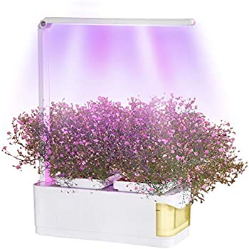 Amazon com : Indoor Hydroponic Herb Garden Kit, Hydroponics