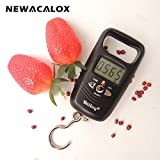 110lb x 0.01lb Mini Portable Scale for Fishing Luggage Travel Weight Hangin ....