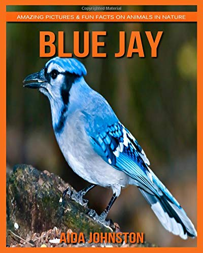 Download Blue Jay: Amazing Pictures & Fun Facts on Animals in Nature ebook