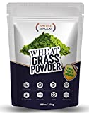 #3: Nature Scholar Wheatgrass Powder 250g (60 Servings) - Chlorophyll Rich Whole Food Wheat Grass - Natural Balance of Beta-carotene, proteins, minerals, amino acids, active enzymes and vitamins