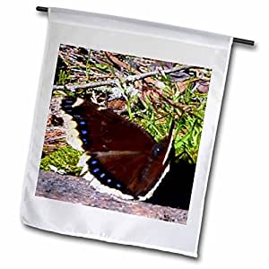 WhiteOak Photography Butterflies - Butterfuly with brown wings - 12 x 18 inch Garden Flag (fl_51768_1)
