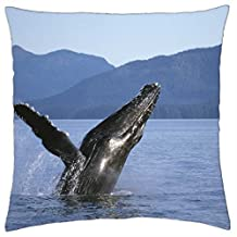 """Humpback Whale - Throw Pillow Cover Case (16"""" x 16"""")"""