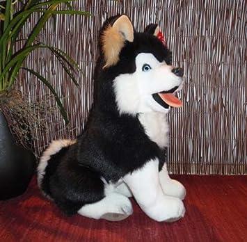Husky Malamute Perro de Trineo 40 cm Negro de peluche blanco Peluche * plüti