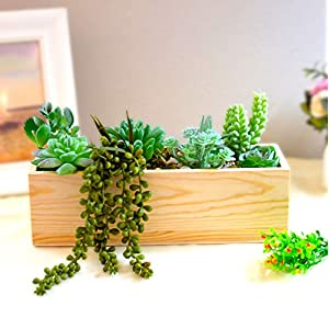 Dandevo 8 Pcs Unpotted Fake Succulent Plants Assorted Realistic Artificial Faux Plastic Silk Greenery Stems in Bulk String of Pearls Hanging Plant for Terrarium Home Wall Decor Large and Small 4