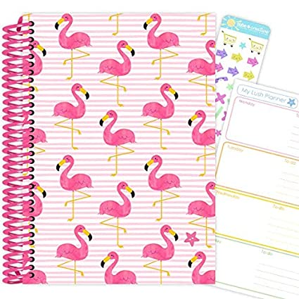 My Lush Planner: edición familiar, 12 meses, agenda sin ...