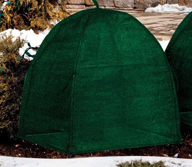 Nuvue Winter Shrub Cover Hunter Green Fiberglass by Nuvue