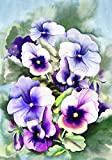 Toland Home Garden Pansy Perfection 28 x 40 Inch Decorative Spring Flower Floral House Flag Review